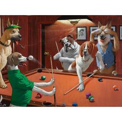 Coolidge Cassius | Кассиус Кулидж | Собаки Играют