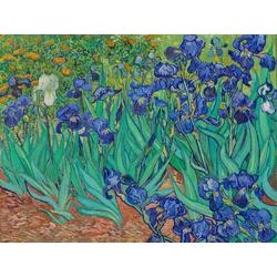 Van Gogh | Ван Гог - Ирисы