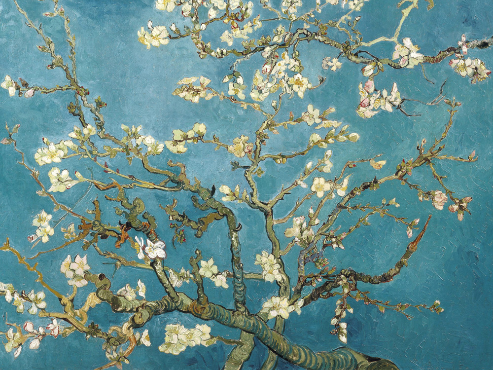 Van Gogh | Ван Гог | Цветущие ветки Миндаля