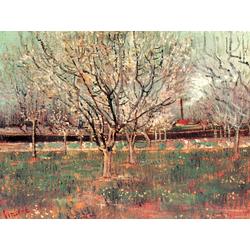 Van Gogh | Ван Гог - Фруктовый сад в цвету (Сливы)