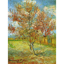 Van Gogh | Ван Гог | Цветущий арль