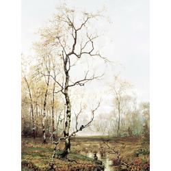 Volkov Efim | Волков Ефим - В лесу по Весне