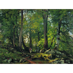 Shishkin Ivan | Шишкин Иван | Буковый лес в Швейцарии