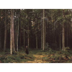 Shishkin Ivan | Шишкин Иван | В лесу графини Мордвиновой