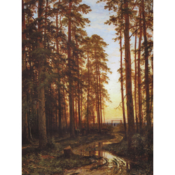 Shishkin Ivan | Шишкин Иван | Вечер в сосновом лесу