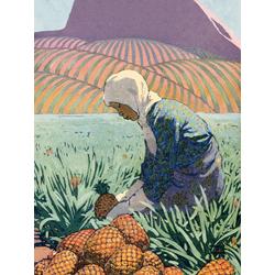 Pineapples | Ананасы