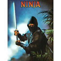 Ninja | Ниндзя