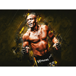 Fight collection (Коллекция постеров) - Anderson Silva   Андерсон Сильва