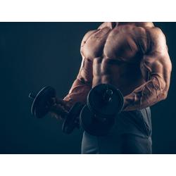 Bodybuilding   Бодибилдинг