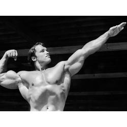Bodybuilding   Schwarzenegger
