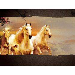 Horse sport | Конный спорт