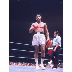 Muhammad Ali | Мухаммед Али