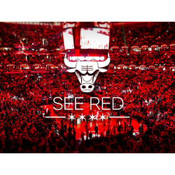 Chicago Bulls | See Red