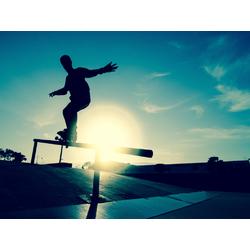 Skate | Скейтбордист