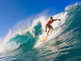 Категория постеров и плакатов Серфинг