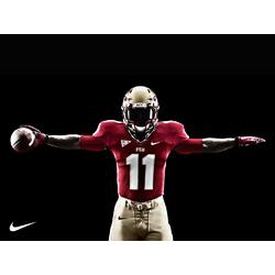 Florida State Seminoles Nike