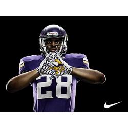 Minnesota Vikings | Миннесота Вайкингс