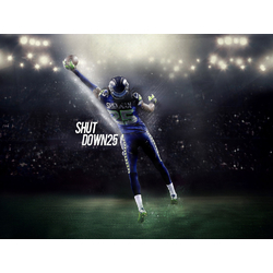 Seattle Seahawks | Сиэтл Сихокс