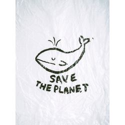 Save The Planet | Сохранить Планету