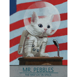 Mr. Pebbles - The First Cat In Space