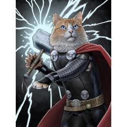 Cat - Tor | Кот - Тор