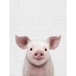 Pig (Коллекция постеров) | Свинья