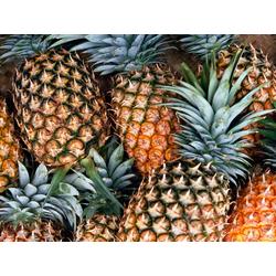 Pineapple   Ананас