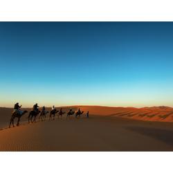 Desert | Пустыня
