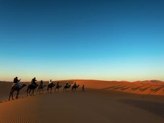 Категория постеров и плакатов Пустыня