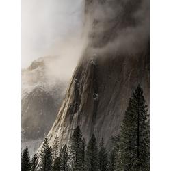 Fog | Туман