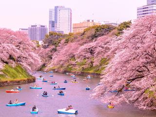 Категория постеров и плакатов Япония