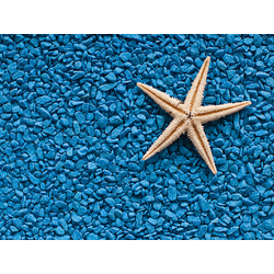 Sea theme | Морская тематика