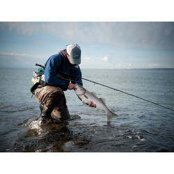 Fishing | Рыбалка
