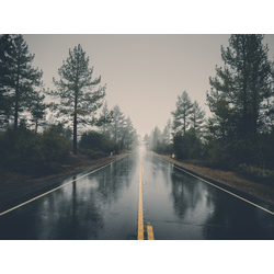 Road | Дорога