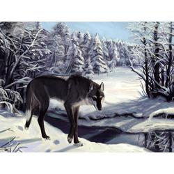 Wolf | Волк