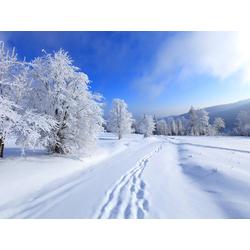 Winter | Зима