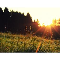 Sunrise   Рассвет