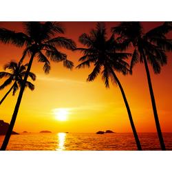 Sunset   Закат