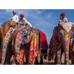 Indian | Индийский | Слоны