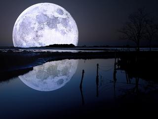 Категория постеров и плакатов Луна