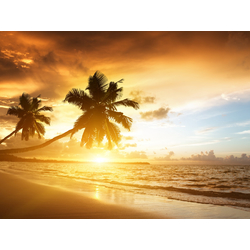 Beach | Пляж